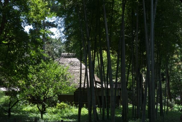 茅葺後小屋と森林